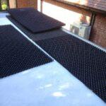 starting a sedum green roof