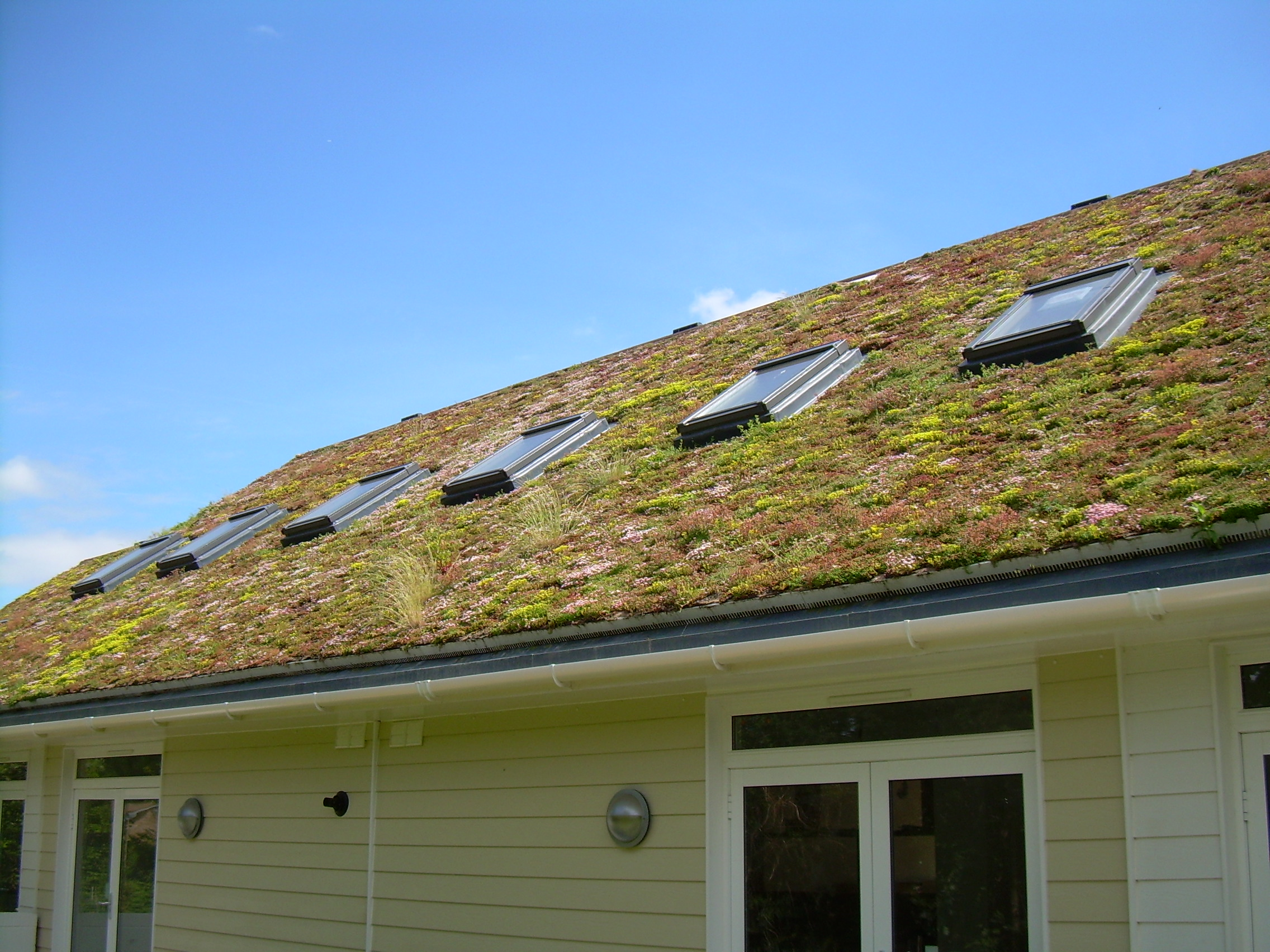 Green Roofs S Amp P Roofing